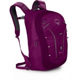 Рюкзак Osprey Axis 18L Eggplant Purple